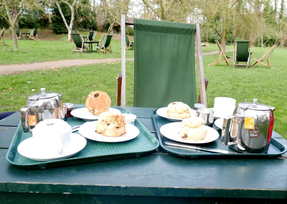 Cambridge - Grantchester scones