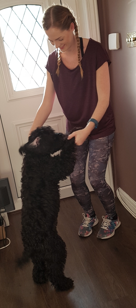new-gym-kit-and-dog